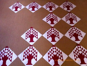 image of Pine Trees Blocks
